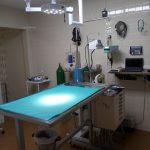 Royal Pet - Centro Cirurgico 02