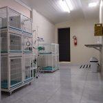 Royal Pet - Sala Pré e Pós operatório 01